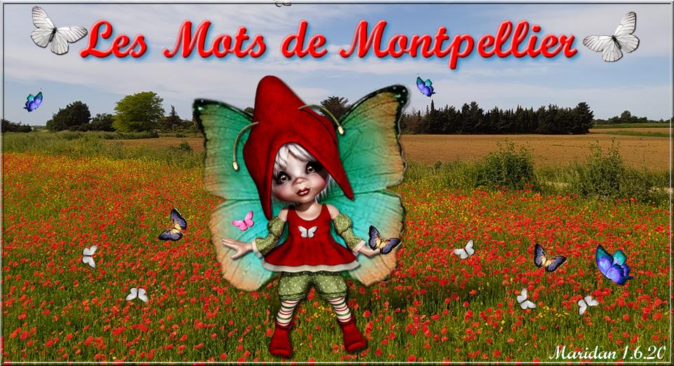 Les mots de Montpellier