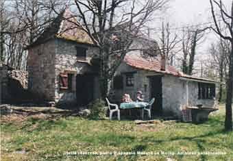 carayac-2000.jpg