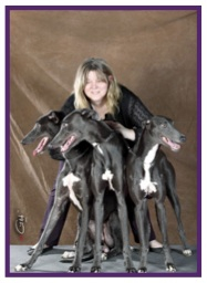 Greyhound18.jpg