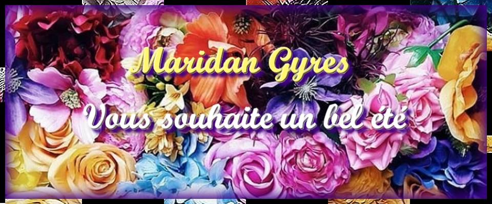 Maridan Gyres