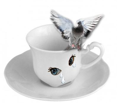 café evy 250 251.png