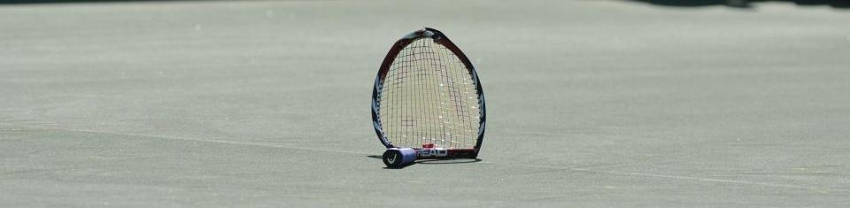 tennismandemerde