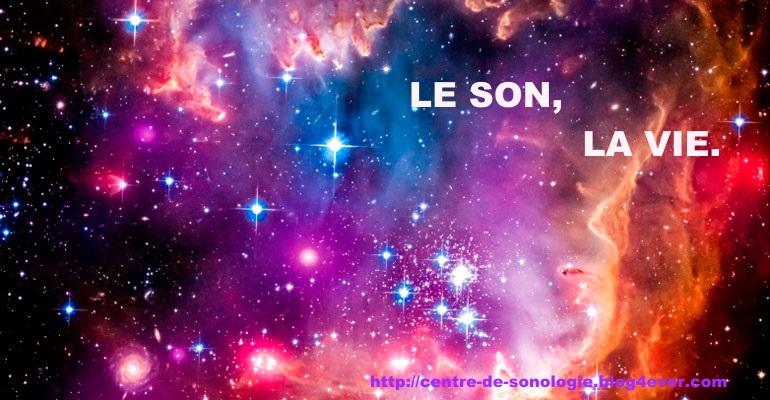 LE SON LA VIE.jpg