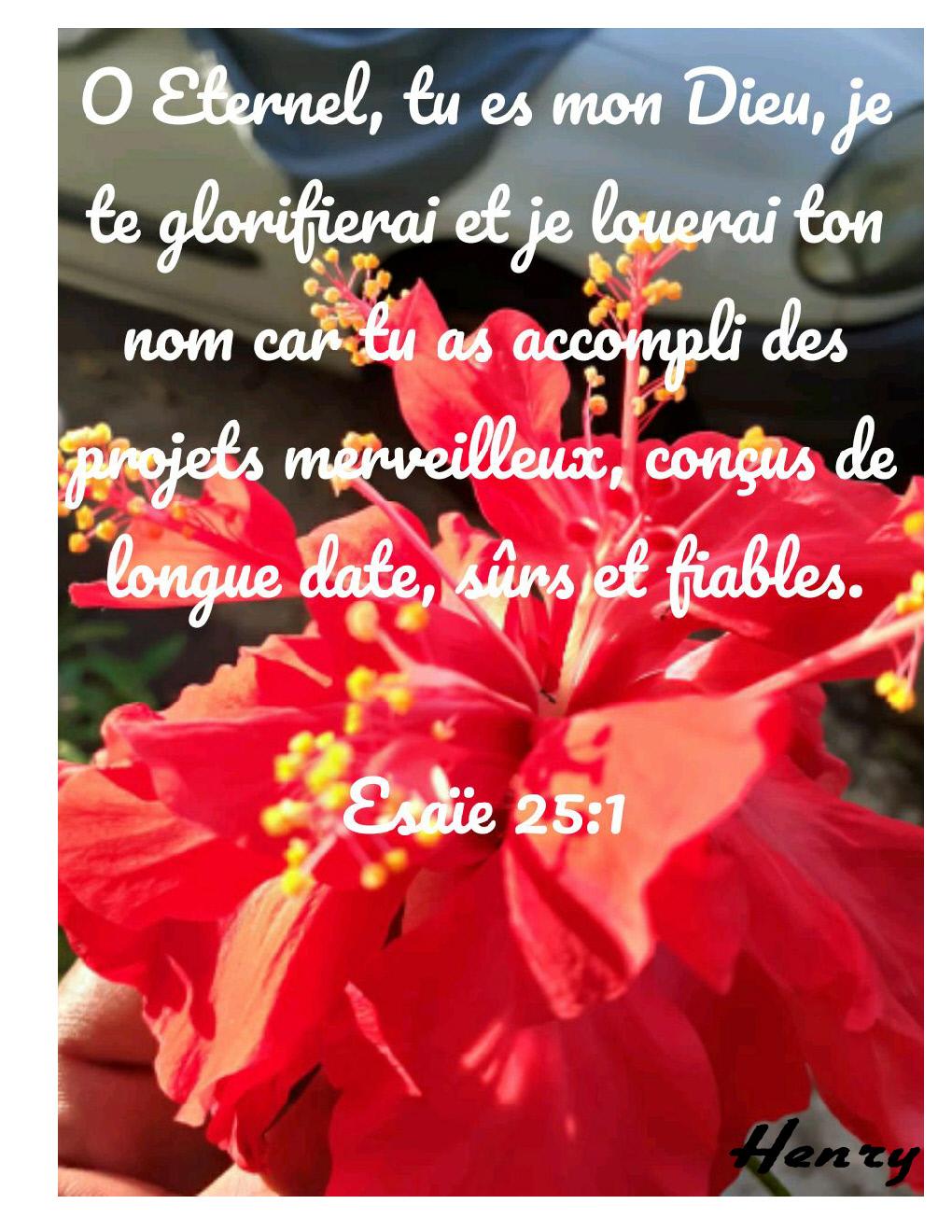 Esaïe 25.1
