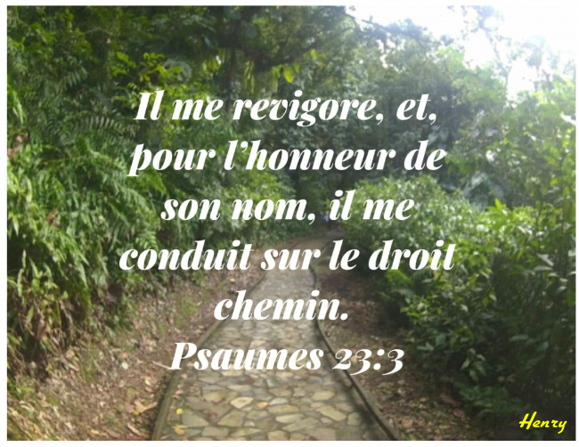 Psaumes 23.3
