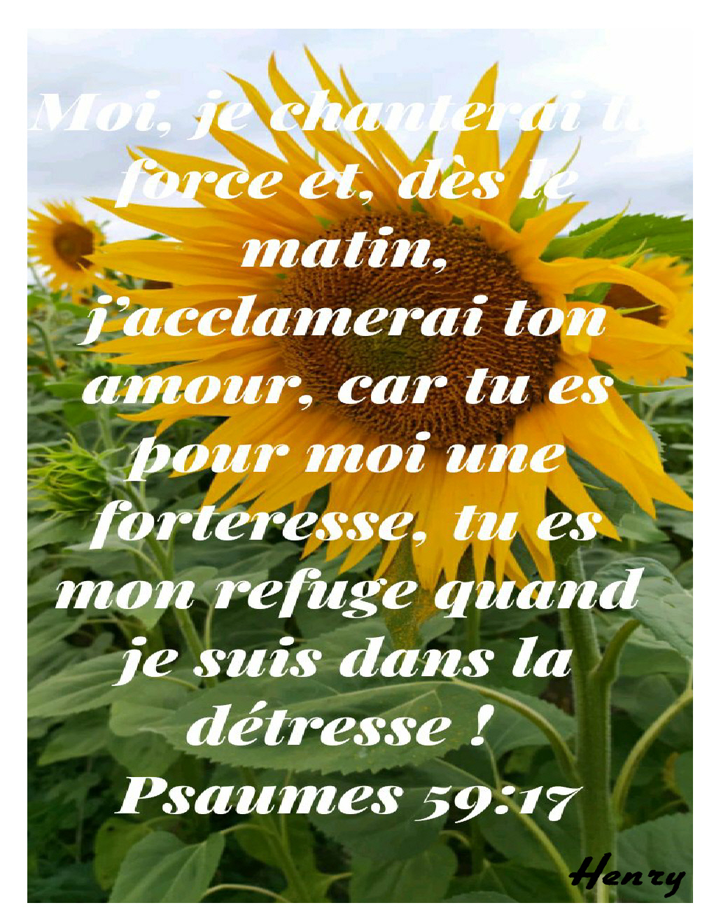 Psaumes 59.17