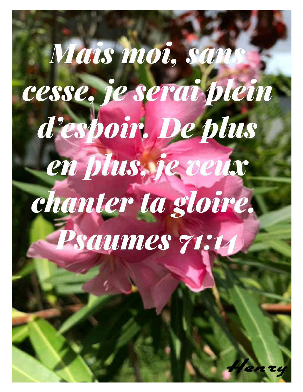 Psaumes 71.14
