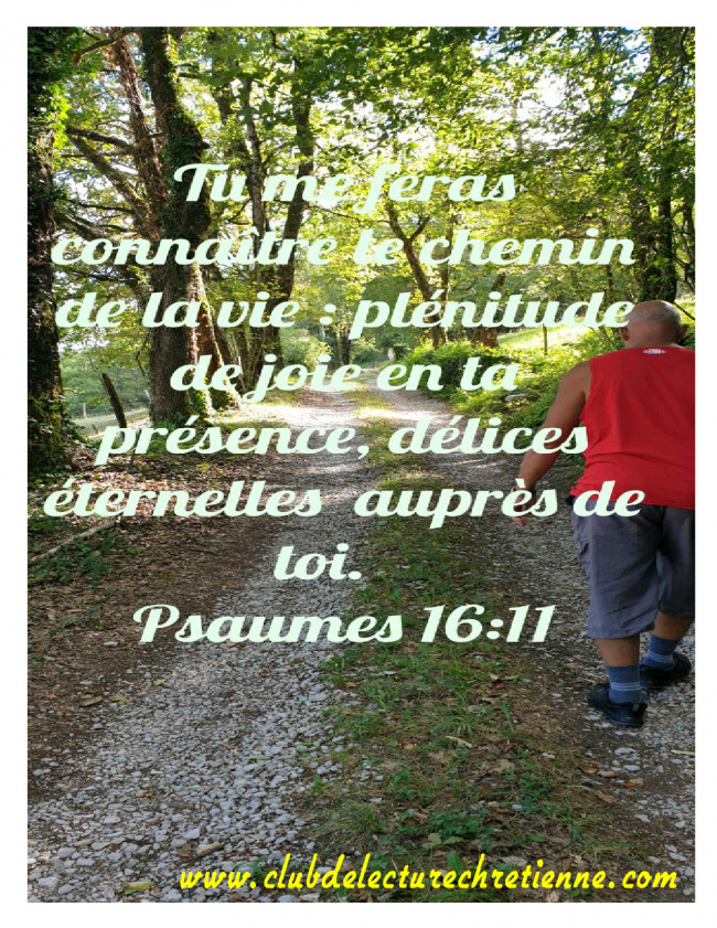 Psaumes 16.11