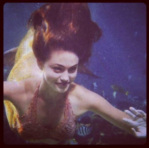 Cleo nage contre la vitre.jpg