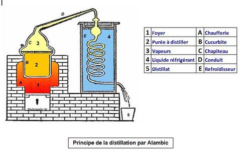 Principe Distillation.jpg