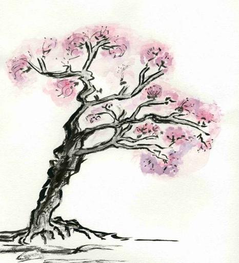 Cerisier_japonais.jpg