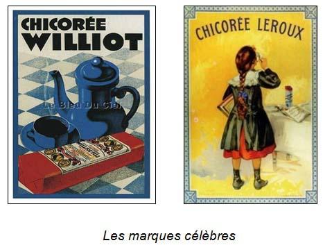 Chicorée Images.jpg