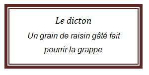 Dicton citron 1.jpg