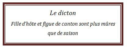 Dicton 6.jpg