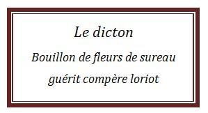 dicton7.jpg