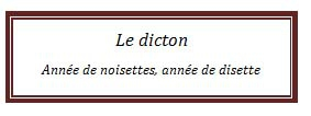 dicton50.jpg
