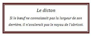 dicton52.jpg