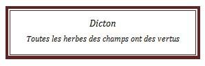 dicton67.jpg