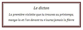 dicton73.jpg