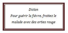 dicton77.jpg