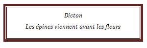 dicton79.jpg