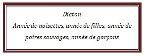 dicton85.jpg