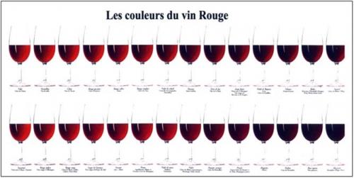 couleurs du vin rouge.jpg