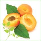 abricots2.jpg
