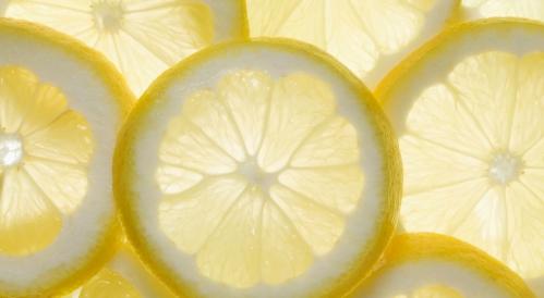 Citron 2.jpg