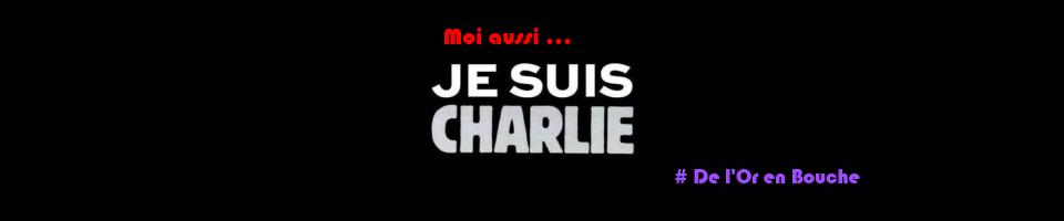 https://www.blog4ever-fichiers.com/2013/09/752281/Banniere-charlie-or-en-bouche-1.png