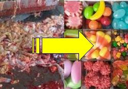 gelatine-porcine.jpg