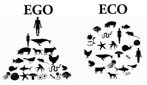 Ego-2-Eco.jpg