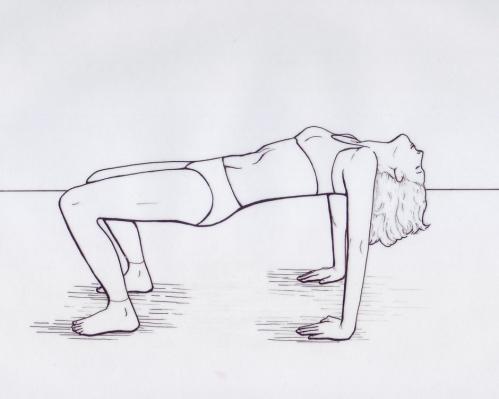 etirement-diaphragme-4pieds1.jpg