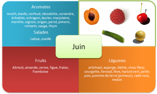 fruits-et-legumes-printemps-juin.png