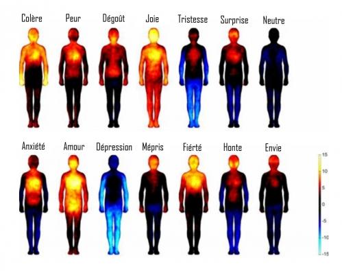 émotion carte.jpg