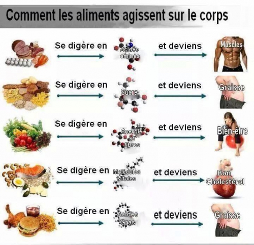 aliments.jpg