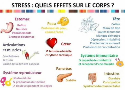 stress sur le corps.jpg