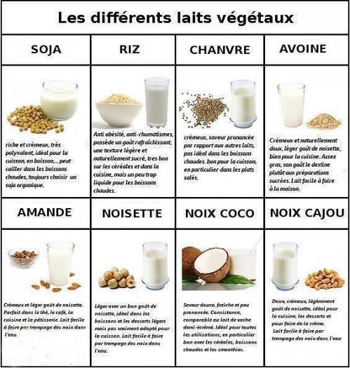 lait végétaux.png