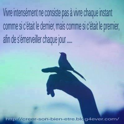 vivre_n.jpg