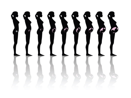 evolution-du-corps-pendant-la-grossesse-femme-enceinte.jpg
