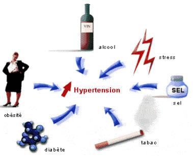 hypertension4.jpg