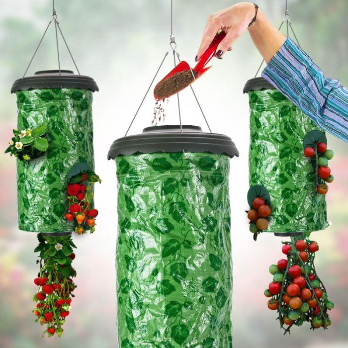 potagers-suspendus-fraises.jpg
