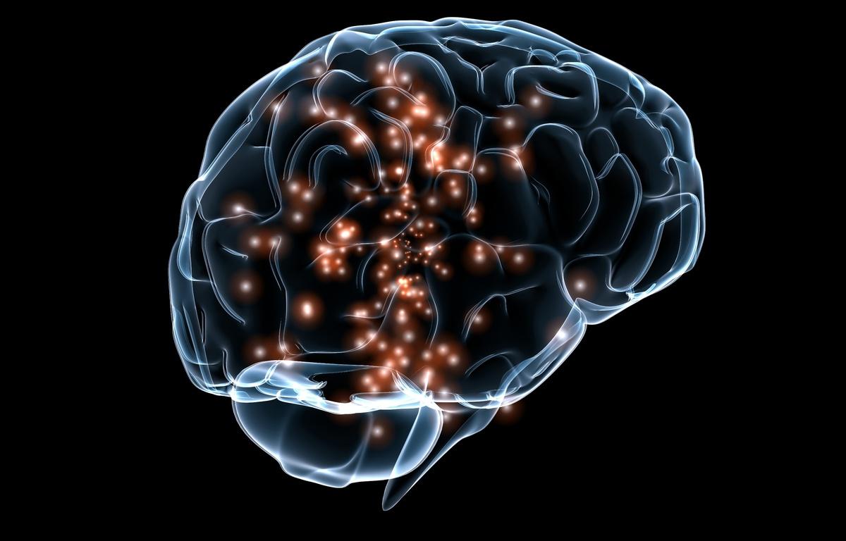 activite-neuronale-cerveau.jpg