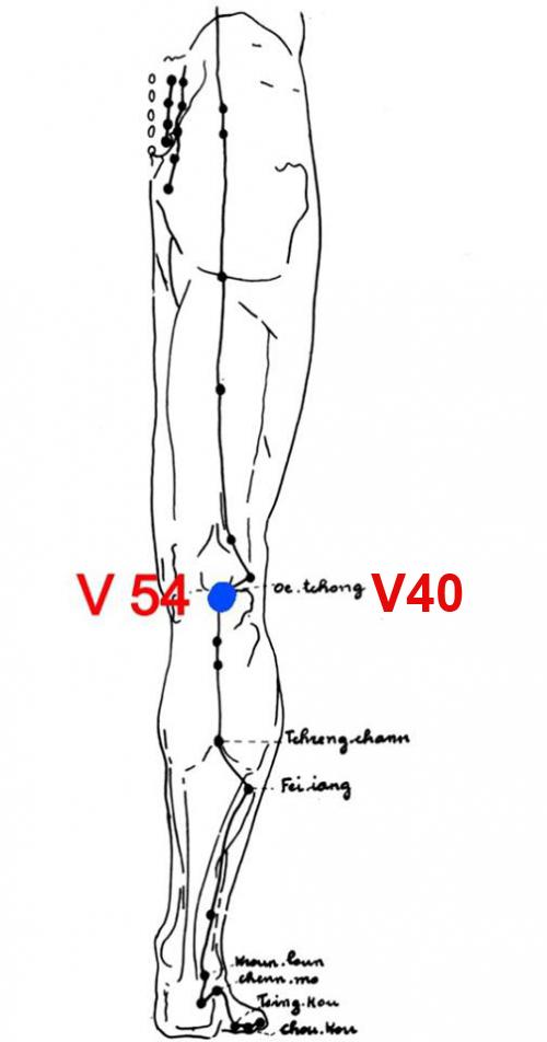 54V.jpg