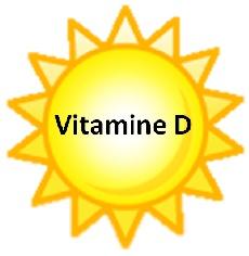 vitamine-d-lumiere.jpg