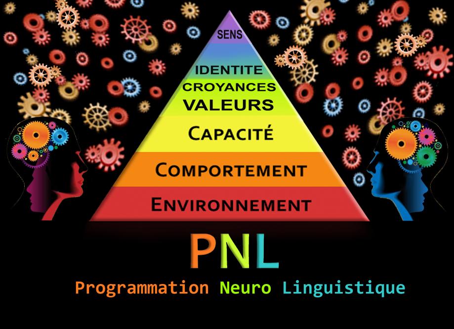 pnl-1 copie.jpg
