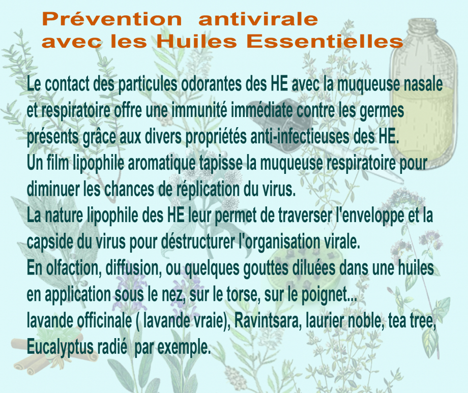 présentation antivirale copie.jpg