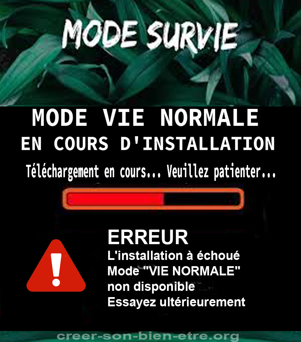 mode survie en cours d'installation.jpg