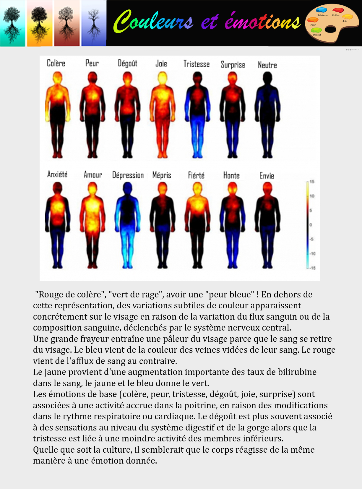 couleurs emotions2.jpg