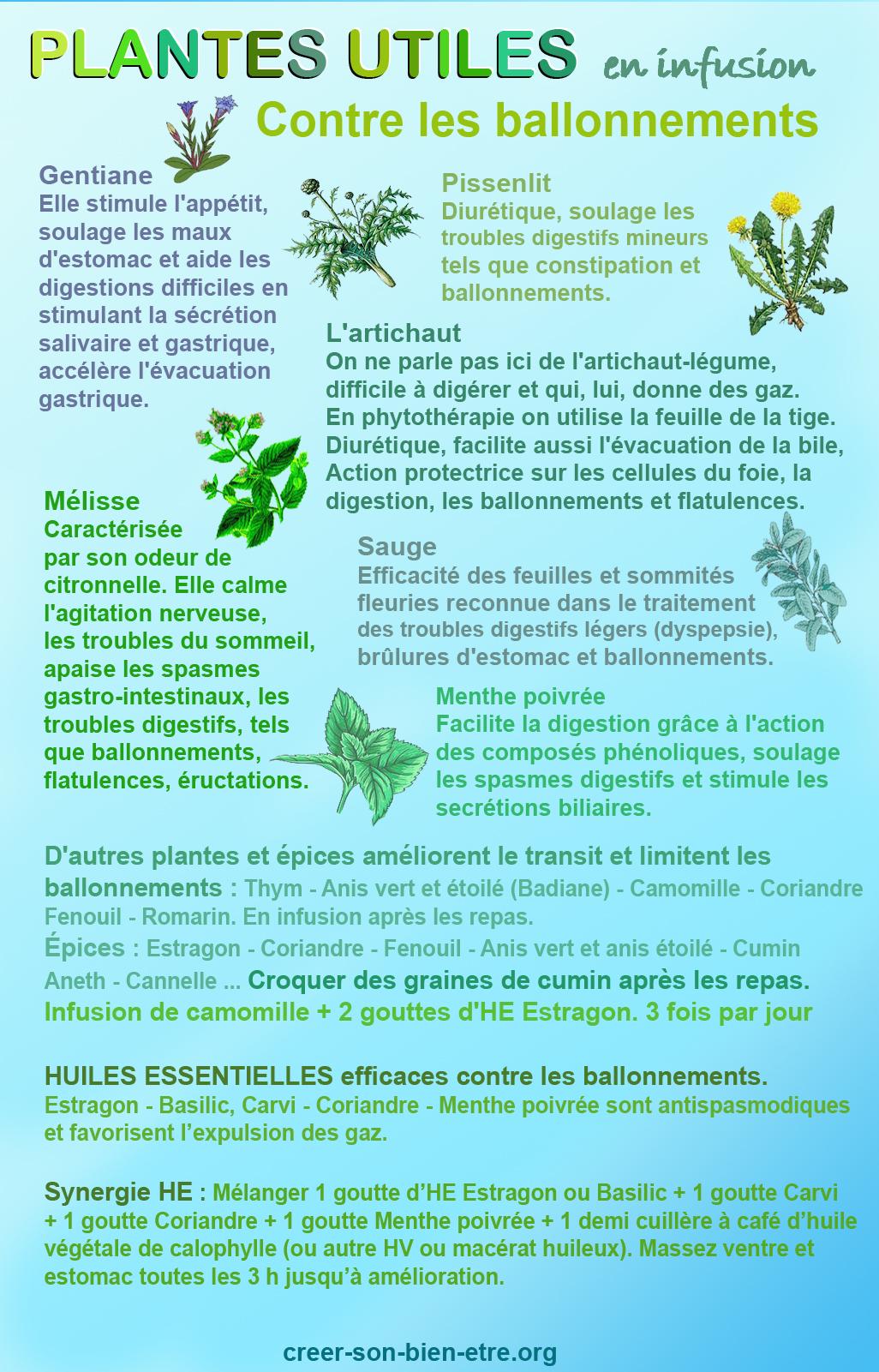 Phyto plantes ballonnement.jpg